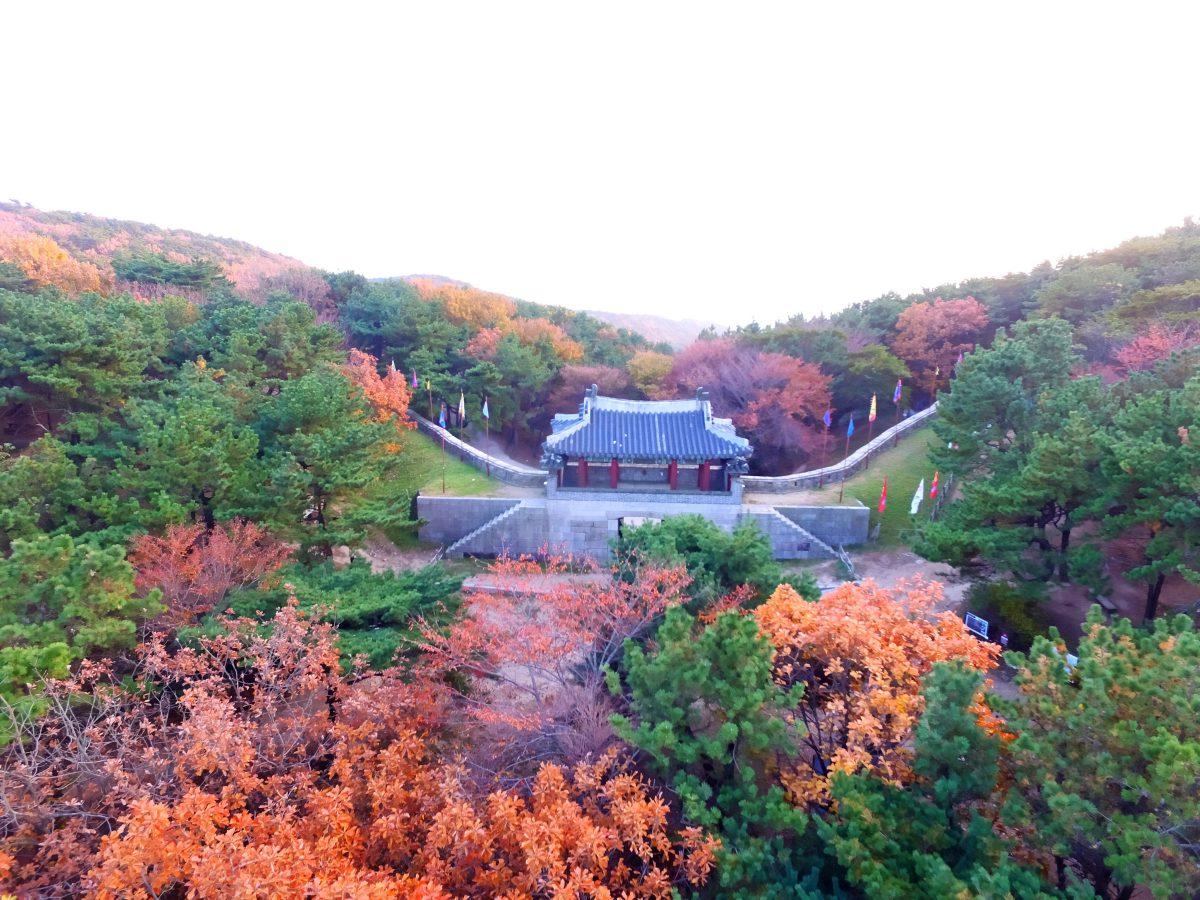 韓國賞楓_釜山賞風景點、住宿推薦