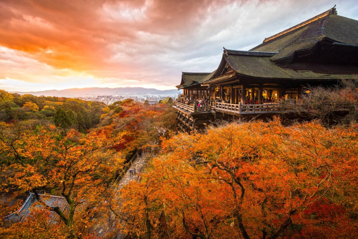 大阪、奈良、京都賞楓景點、住宿